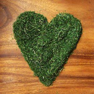 organic-kale