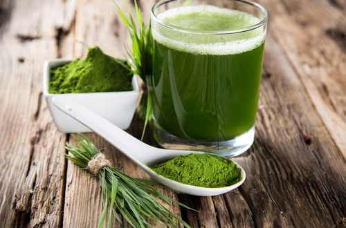 wheatgrass-powder2