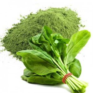 Spray-Dried-Spinach-Powder
